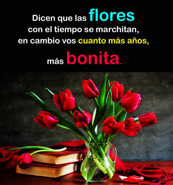 Flores y rosas bonitas