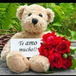 Letra de te amo mucho amor