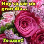 Imagenes de rosas rosadas