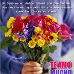Fotos de flores con frases lindas