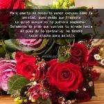 Imagenes de pensamientos de amor y rosas
