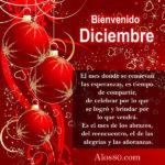 Feliz y Bienvenido mes de Noviembre
