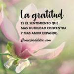 Frases: La gratitud y la humildad