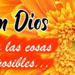 Frases cristianas: Con Dios todo es posible