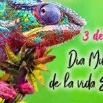 Dia Mundial de la Vida Silvestre 2021